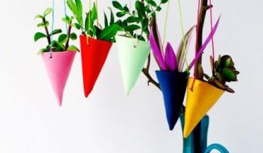 Cultiver son potager intérieur : les conseils de Zadig