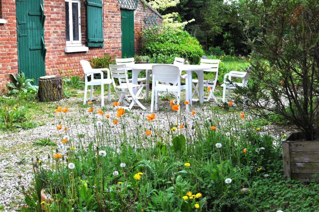 Comment créer son propre jardin spontané ?3