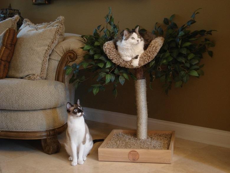 Décoratif et pratique c'est l'arbre à chat design 2