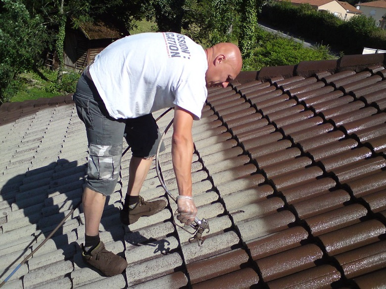5 conseils pour mener à bien sa peinture de toiture 3
